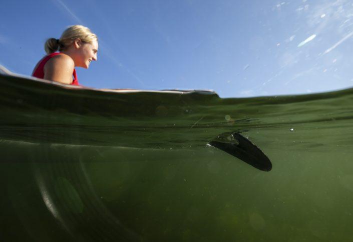 Havspaddling